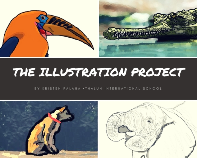 The Illustration Project